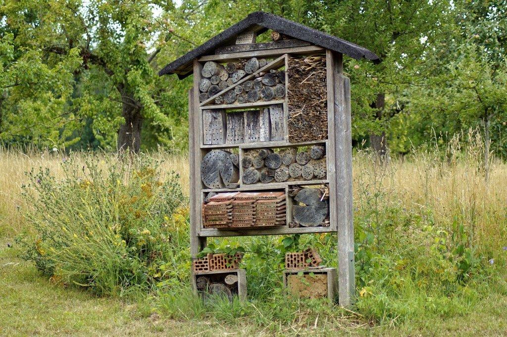 hotel-insecte-biodiversite-urbaine-permaculture