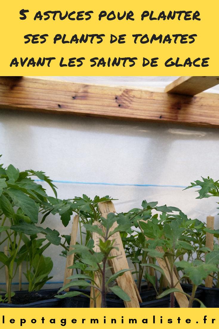 astuces-plantation-tomate-saints-glace-pinterest