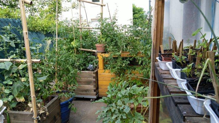 permaculture-terrasse-balcon-systeme-autonome