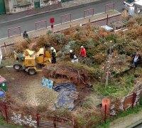 Broyage des sapins de noël au jardin partagé du Pré Saint Gervais