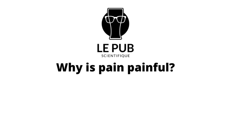 Why is Pain Painful?