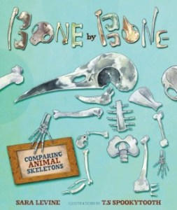 Bone by Bone nonfiction picture book by Sara Levine and T.S Spookytooth