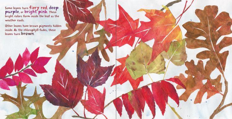 Fall Leaves-5.JPG