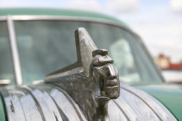 Now that is a hood ornament that says something.  I'm just not  sure what.