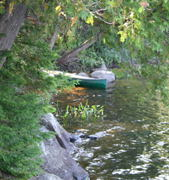 A spot to park the canoe for a few minutes while we walked  around a bit and had a snack.