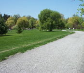 The Arboretum on the north side of Dows lake.