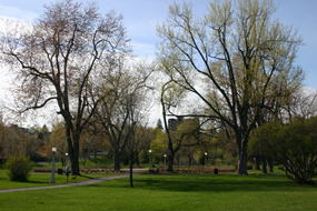 Strathcona Park is one of my favorite parks in the Ottawa.