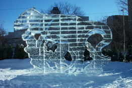 Okay, I really don't want to meet this in a dark alley either - a  very large ice Tyranosaurus.