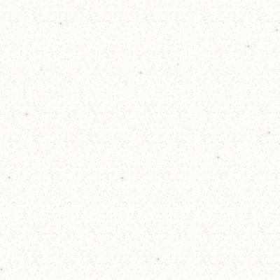 Pittura ad effetto decorativo Glitter Bianco Bianco 2 L prezzi e offerte online  Leroy Merlin