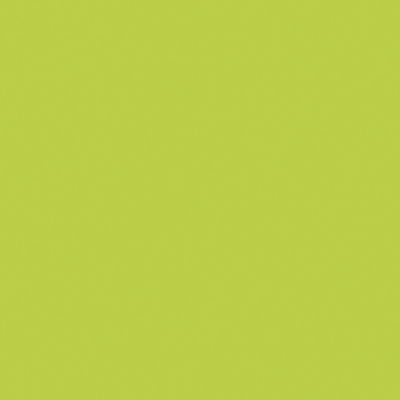 Pittura Effetto lavagna Les Dcoratives verde 05 L prezzi