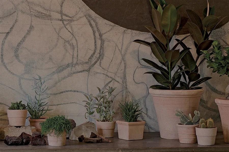 Piante da appartamento, decorazioni vegetali, artigianato vaso, accessori per la. Vasi Per Piante E Fiori Guida Alla Scelta Leroy Merlin