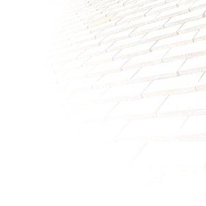 image de fond du site des charpentiers montbardois