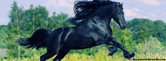Etalon noir-Photo de couverture journal Facebook