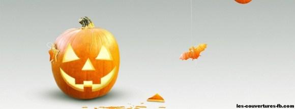 Citrouille Orange - Photo de couverture journal Facebook
