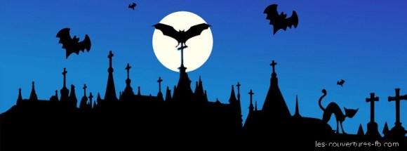 chauve souris sur le toit - Photo de couverture journal Facebook