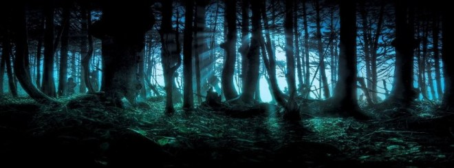 forêt noire - Photo de couverture journal Facebook