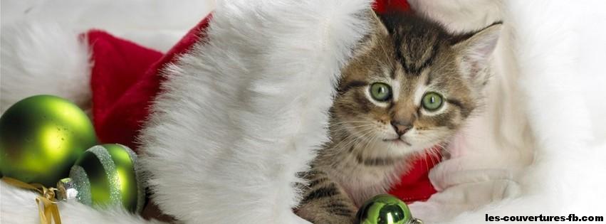 Le chat de no l photo de couverture facebook - Image de chat de noel ...
