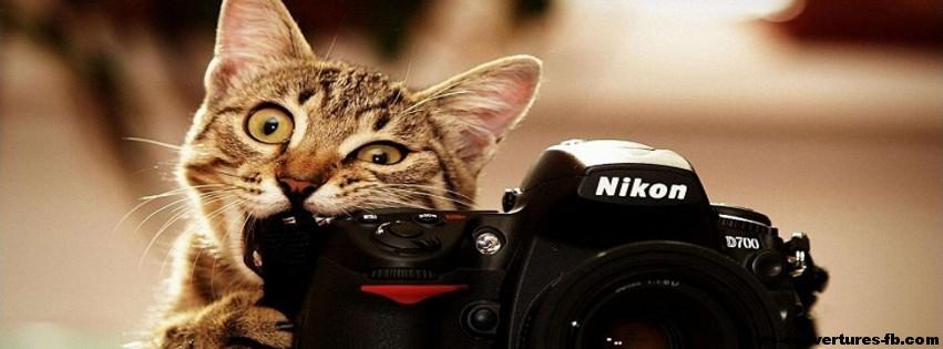 clic le chat -Photo de couverture journal Facebook