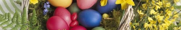 Panier de Pâques -photo de couverture journal facebook