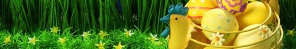 mon jardin plein d'oeufs cachés -photo de couverture journal facebook