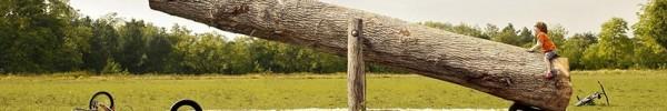 Balançoire sur un gros bois Covuerture Facebook