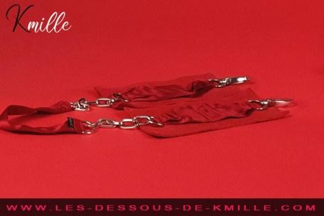 Présentation d'une paire de contrainte de luxe, de la marque Lelo.