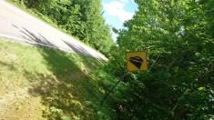 la route est horizontale,c'est la paysage qui est penché