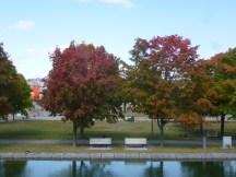 Les couleurs de l'automne sont là