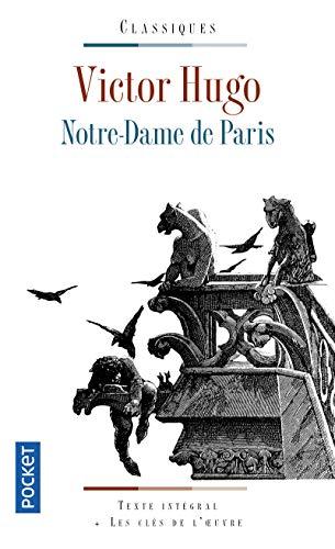 C'est Pas Sorcier Notre Dame De Paris : c'est, sorcier, notre, paris, Documentaire,