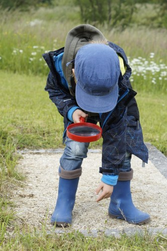 un enfant observe la nature à la loupe