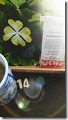 14-chakaiclub-les-filles-du-thé