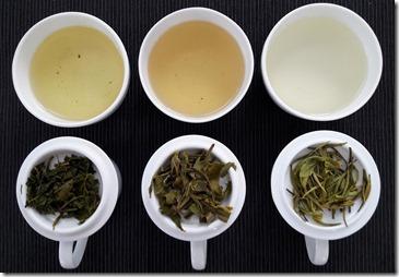 dégustation-the-vert-de-chine-les-filles-du-thé