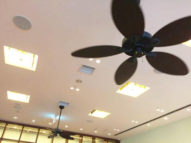 ボガーツカフェ,大阪堂島,店内のファン