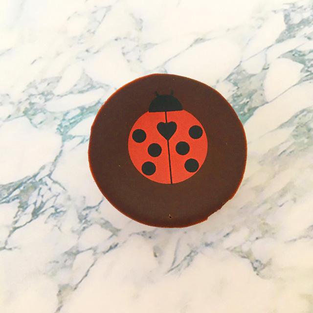 パスカル カフェ,パスカルセレクション,コクシネールルージュ,赤色のてんとう虫のチョコレート,バレンタイン,チョコレート, Coccinelle,Pascal Caffet,Pascal Selection,Valentine,