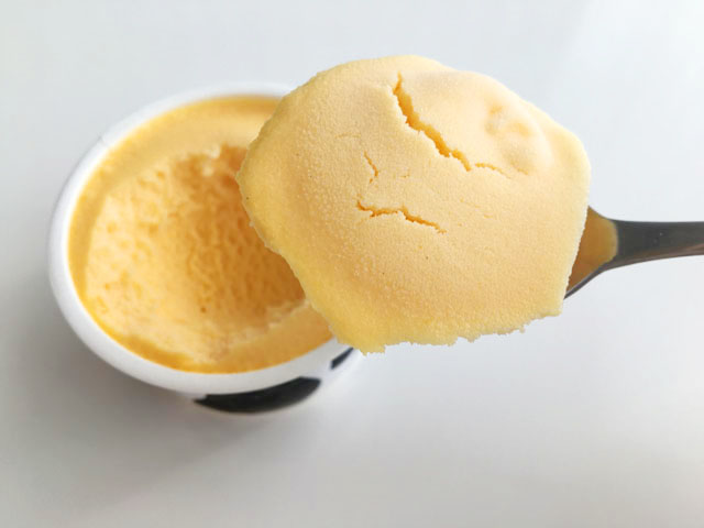 十勝ドルチェ,十勝白い牧場アイスクリーム,赤肉メロン,スプーンですくっている様子,