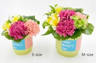ブルームアンドストライプス,生花のアレンジメント,スタイリッシュアレンジメント(S),BLOOM & STRIPES,母の日,2020,