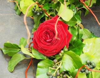 Des roses et du feuillage