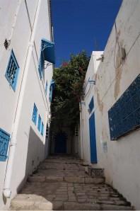 marlen-sauvage-dans-Sidi.2