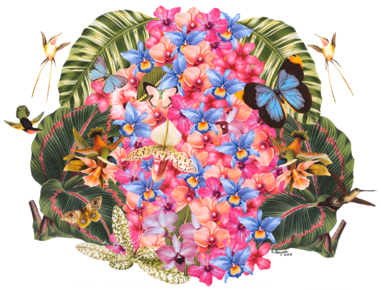 Paper collage with a tropical flowering of orchids with butterflies and sheartails, 2016