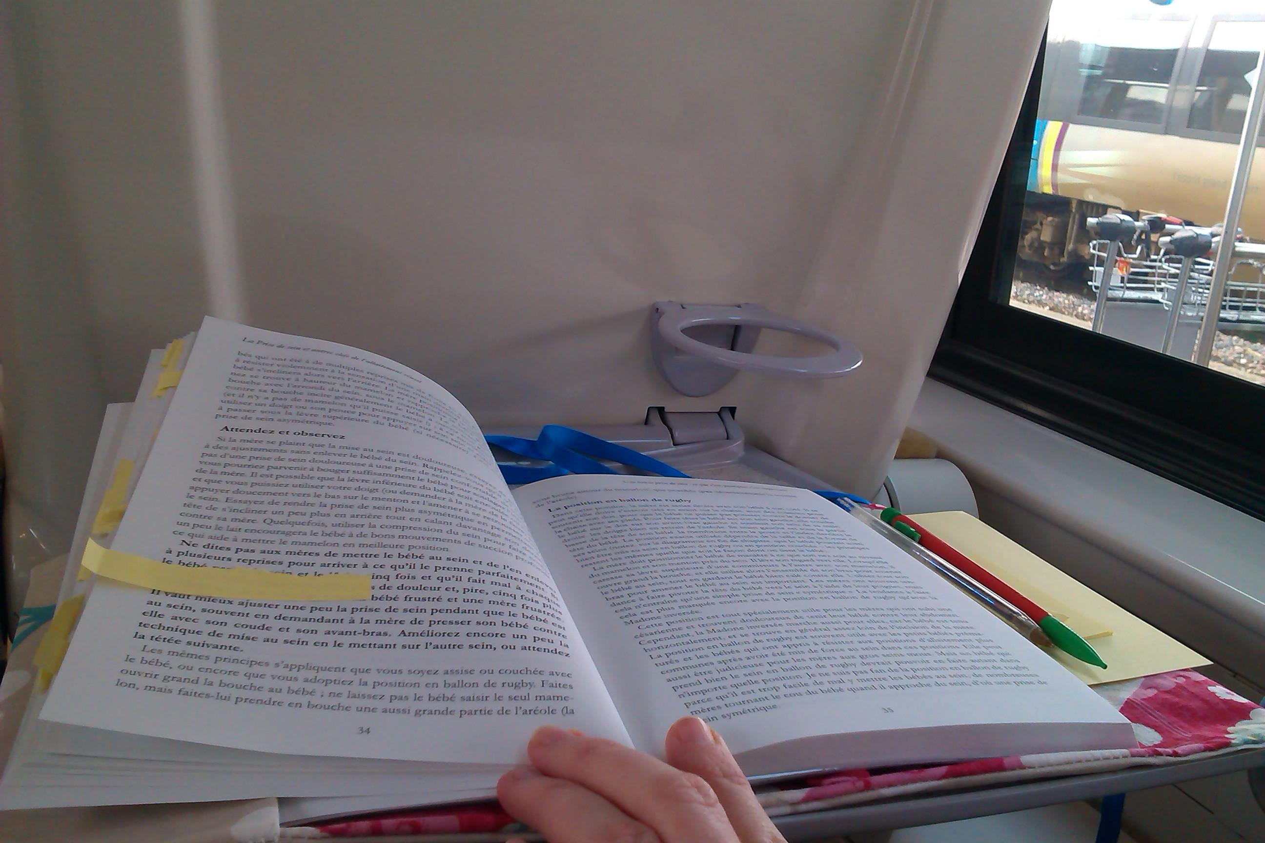 Le livre, mes post-it et mon train !