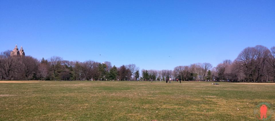 Central Park, Printemps