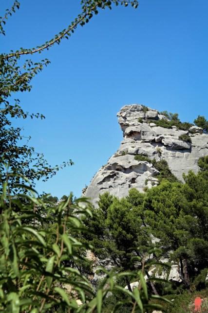 Les Baux de Provence - Nature