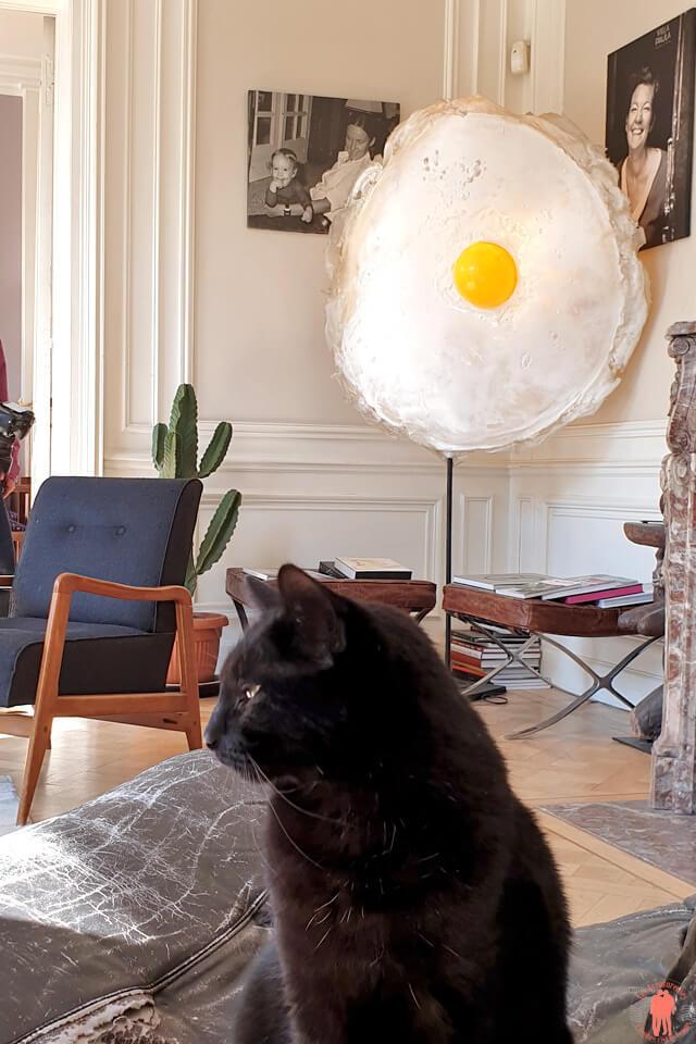Salon de la Villa Paula et son chat à Tourcoing près de Roubaix
