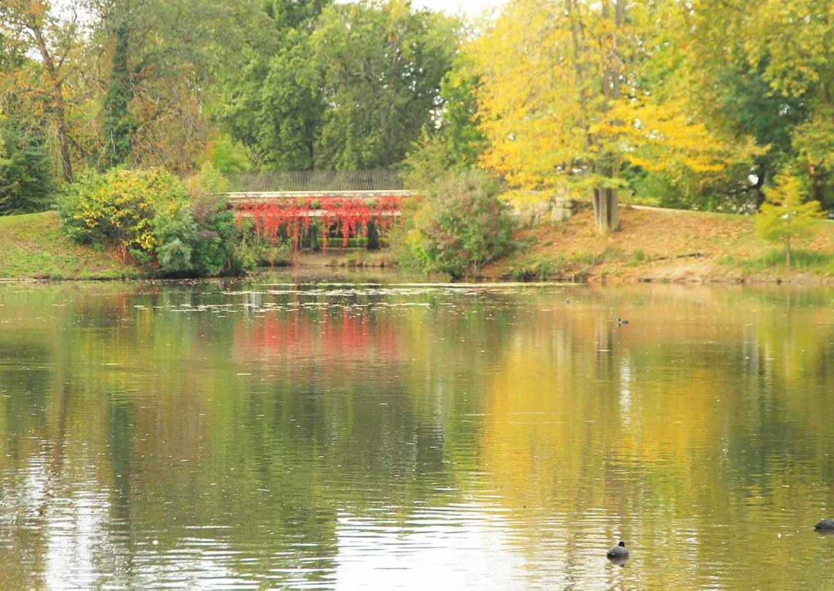Balade au Parc Majolan Blanquefort