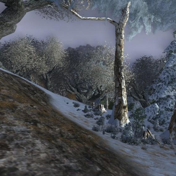 La route sous la forêt (3/3)