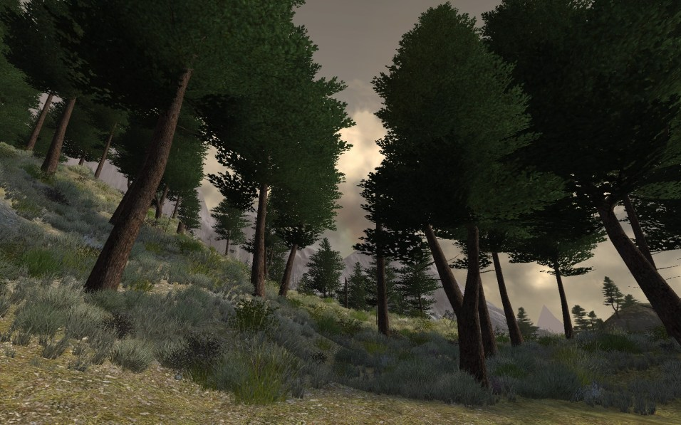 ScreenShot00728
