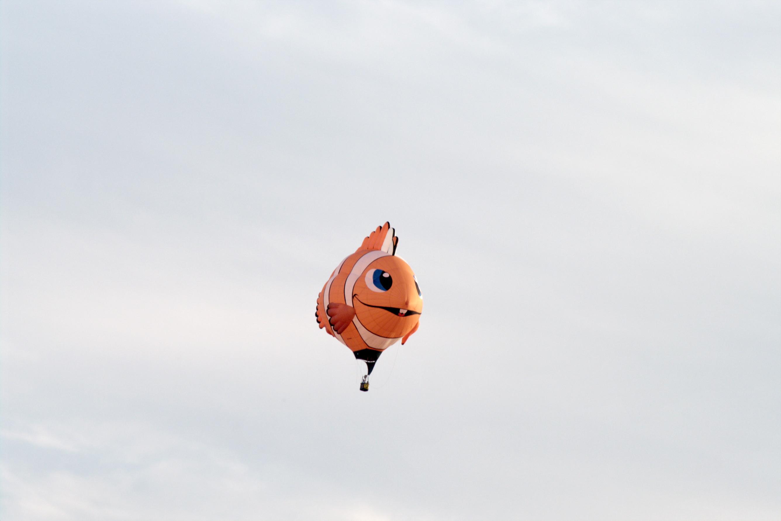Wally, le mignon poisson clown, en était à son premier survol de la Montérégie