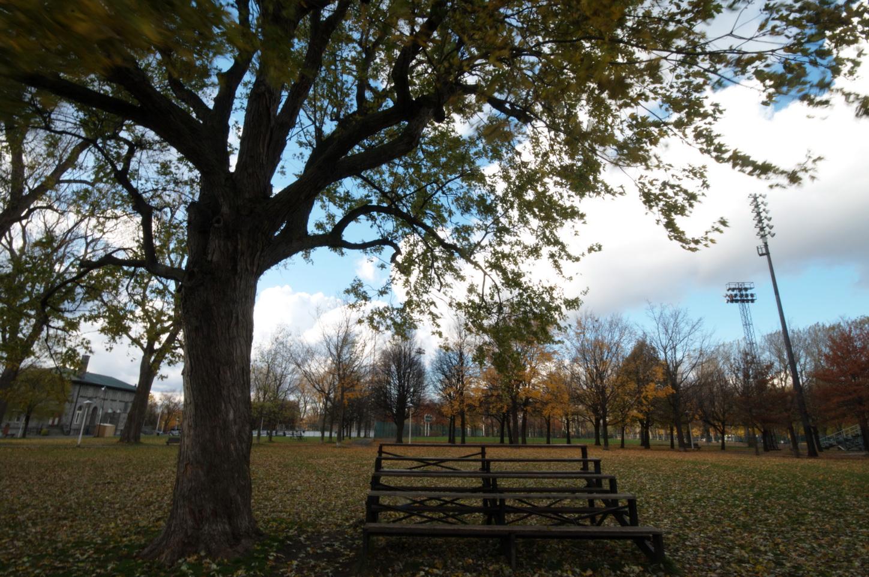 Chronique d_un jour d_automne_005