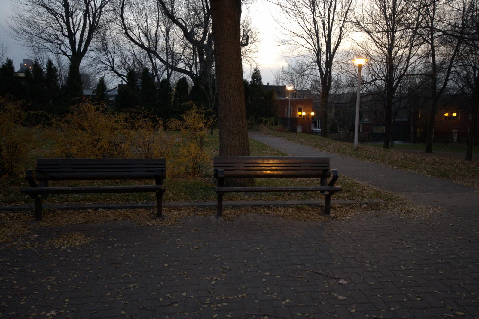 Un parc dans mon quartier_012