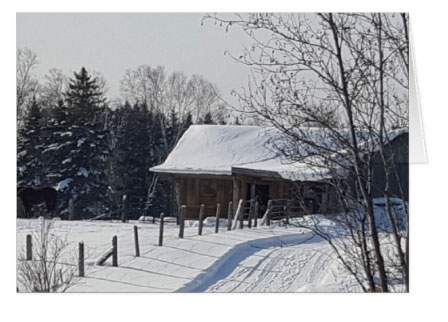 The Farm in Winter…